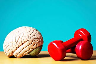 Как натренировать мозг? 10простых советов по улучшению внимания иконцентрации от нейропсихолога