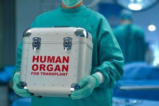 В Украине вступил в силу закон о донорстве