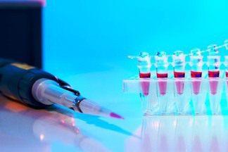 Эстрадиол в крови у женщин: норма по возрасту