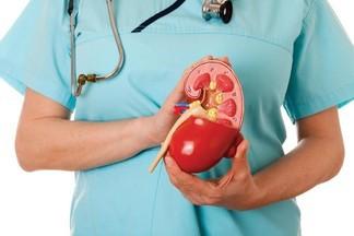 Пиелонефрит: причины, симптомы и лечение